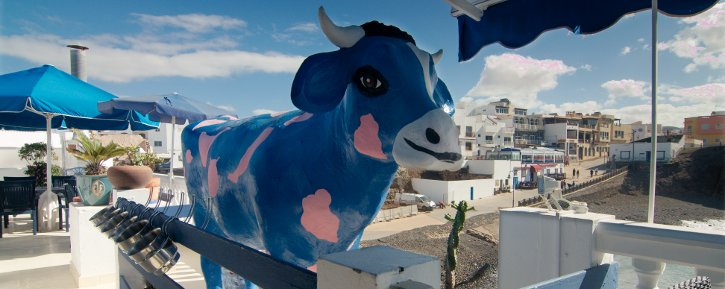 Vaca-azul-header-small
