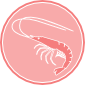 seafood-icon